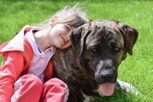 huisdieren houden meer geluk