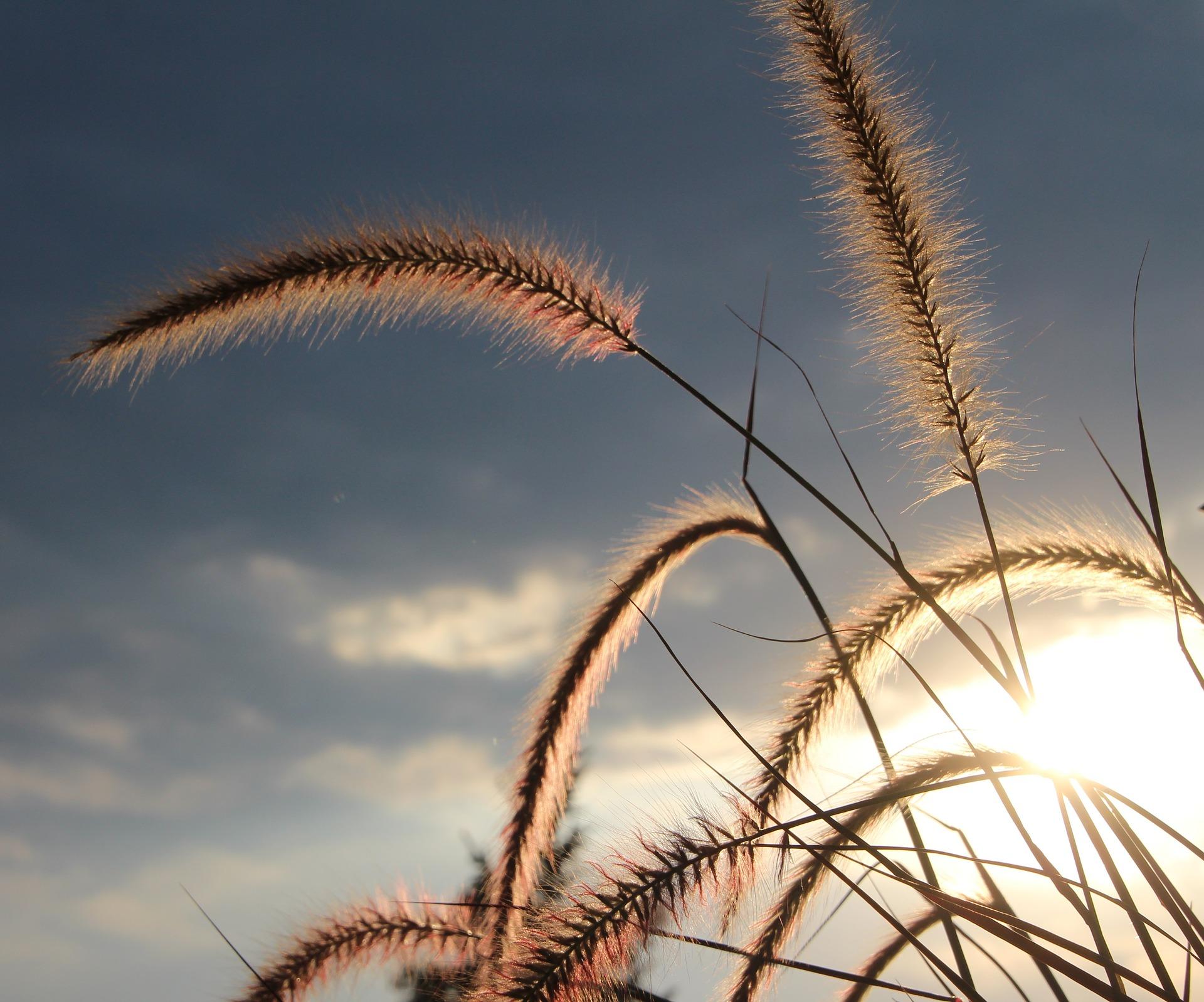 Gelukstip - Tijd voor de voorjaarschoonmaak